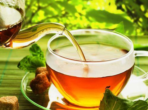 Green Tea Calories - Lose Weight