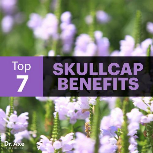 How the Chinese Use Skullcap Tea