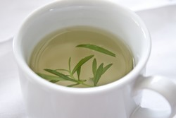 Rosemary Tea - An Elegant Remedy